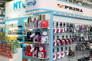NEC Spring Fair Feb 2017